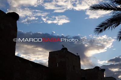0250-Marocco-012
