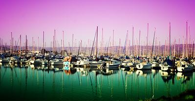 Boats at Berkeley Marina