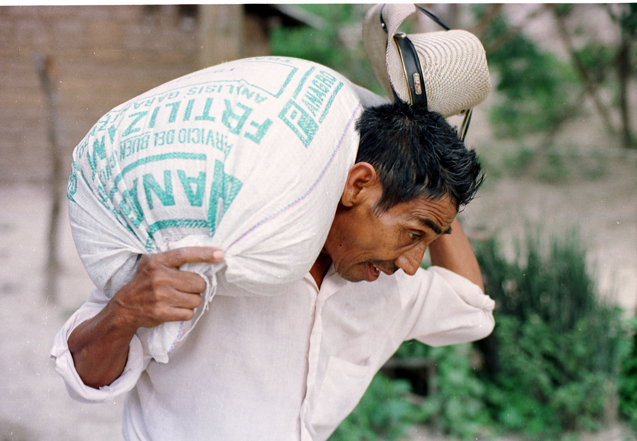 Carlos Ordonez hauls a bag of donated corn seeds to his home in San Antonio de Alauca in eastern Honduras September 13, 2001. The American, Dutch and Honduran Red Cross have donated both food and seeds to 15,000 drought affected families in the Central Amrican country. With 300,000 people suffering from effects of  the drought, Honduras is the most widely affected country in th region.  REUTERS,/ Adam Bernstein