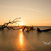Driftwood Beach Moonrise-53