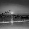 Driftwood Beach Moonrise-54-2