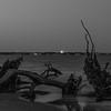 Driftwood Beach Moonrise-2-2