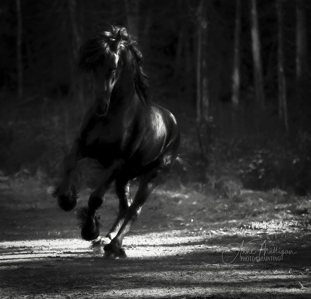 """""""Virtue shall be bound into the hair of thy forelock.  I have given thee the power of flight without wings."""" Author Unknown"""
