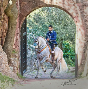 PRE Stallion Jalisco Garrocha ,  owned by Mariluz Duende, ridden by Tomas Santiago Solana,  Castle and Monastery Escornalbou, Spain