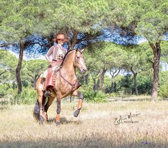 Clémence Faivre and her fabulous Lusitano Stallion, Fuego FG,  near Jerez, Spain
