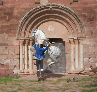 PRE Stallion Jalisco Garrocha ,  owned by Mariluz Duende, rider Tomas Santiago Solana,  Castle and Monastery Escornalbou, Spain