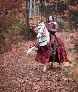 His broad clear brow in sunlight glowed;        100 On burnished hooves his war-horse trode; From underneath his helmet flowed His coal-black curls as on he rode,         As he rode down to Camelot.  Tennyson