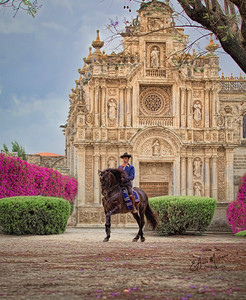 PRE Stallion and rider from Yeguada de la Cartuja, Carthusian Monastery, Jerez, Spain