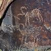 Bighorn sheep petroglyphs in Inscription Canyon, Black Mountain Rock Art District, Mojave Desert, California