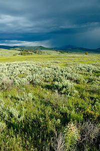 Thunderstorm over the Gallatin Range from Swan Lake Flat Yellowstone National Park