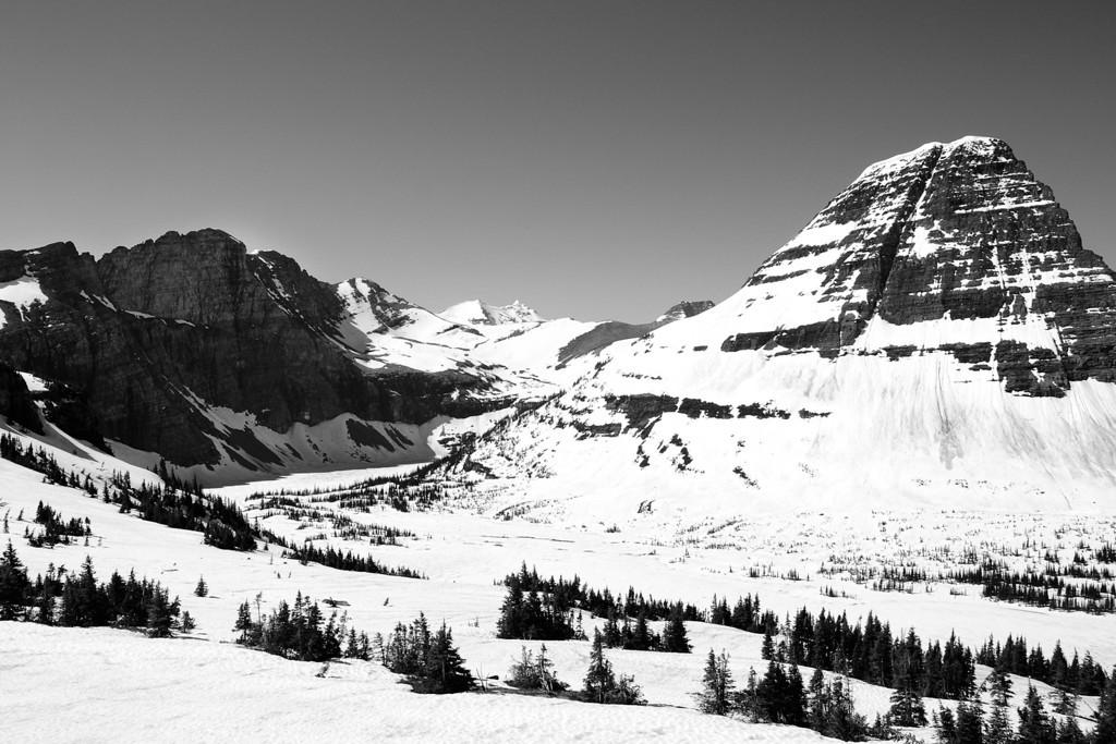 Hidden Lake Valley Glacier National Park