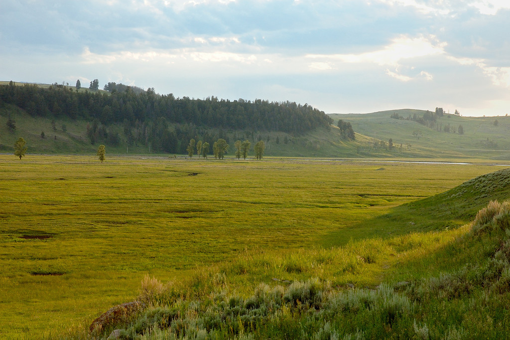 Lamar Valley after the storm Yellowstone National Park