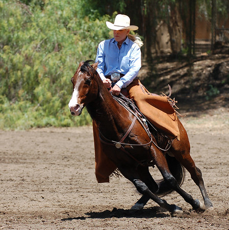 Joan Embery shows cutting horse at ACES Cookout for Critters hosted by Joan Embery and Duane Pillsbury at the Pillsbury Ranch in Lakeside, CA