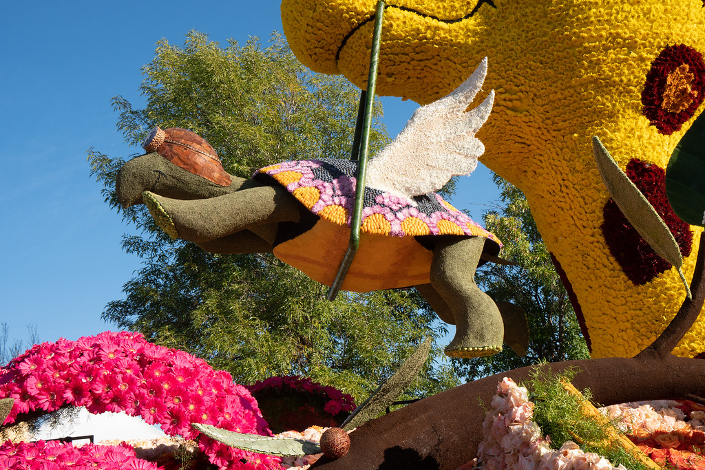 Soaring with Hope is the title of this float