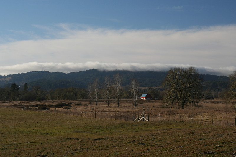 Farm in Willits - view from Eastside Rd