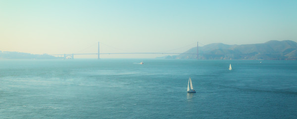 Sails on San Fran Bay