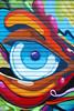 Street art spray paintings grafitti in SF