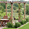 Small pergola with Mediterranean garden surrounding