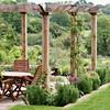 Small pergola with Mediterranean garden surrounding