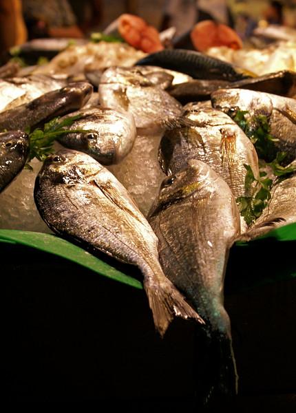 FISH. MERCADO DE  SANT JOAN. LAS RAMBLAS. EL RAVAL. BARCELONA.