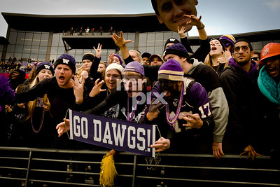 Sports Photography - Dawg Fans