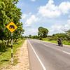 NEGBOMBO TO ANARADHAPURA. SRI LANKA. STREET SIGN WITH ELEPHANT. [3]