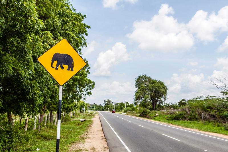 NEGBOMBO TO ANARADHAPURA. SRI LANKA. STREET SIGN WITH ELEPHANT. [1]