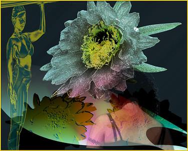 FLOWER 1O2