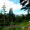 """""""The Color Purple""""<br /> <br /> Mount Rainier National Park <br /> © Copyright Ken Welsh"""