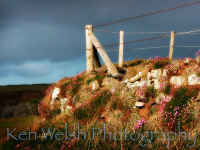 """Below the Pasture""  St. David's, Wales     © Copyright Ken Welsh"