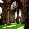 """Light on the Lawn""