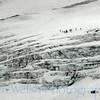 Expedition Glacier