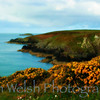 """Irish Sea""<br /> <br /> St. David's, Wales<br />  © Copyright Ken Welsh"