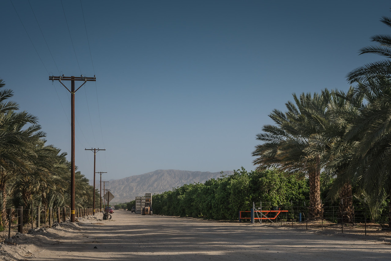 Agriculture flourishes on the North Shore of Salton Sea