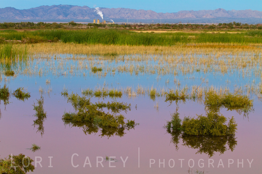 Salt marsh reflects the colors of sunset while a geothermal plant releases steam in the background in Calipatria on the shores of the Salton Sea, California