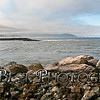 Jetty Rock Art Tillamook Jetty 7/15/2014
