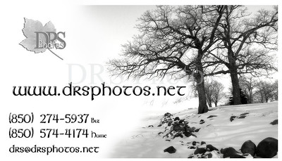New - 2009 DRS Photos New Biz Card
