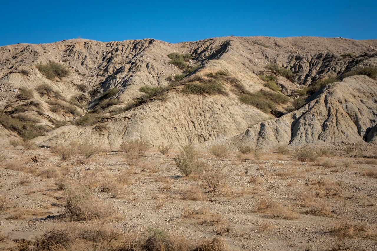 Green line of foliage halfway up the slope marks the San Andreas Fault
