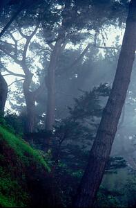 Near Lombard and Hyde, San Francisco, California