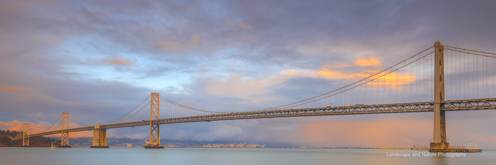 Bay Bridge Evening