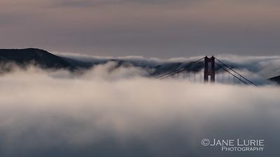 Headlands and Fog