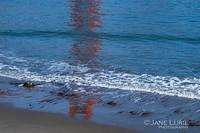 Golden Gate Reflection