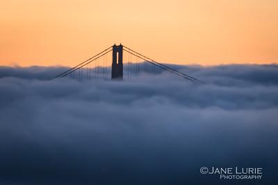 Peeking Through, Golden Gate and Fog