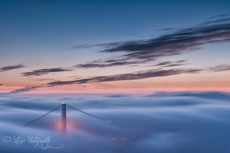 Above the clouds - San Francisco, CA
