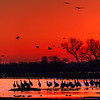 Red Dawn on the Platte River