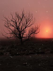 Desert sunset, snow and fog