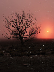 Desert sunset, snow and fog