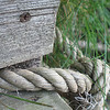 Dock and Knot<br /> Muskegon River, Michigan