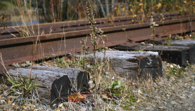 Tilton Rails