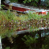Saltmarsh Pond - Rowboat<br /> Gilford, NH